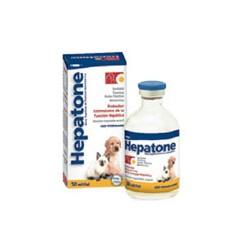 HEPATONE LARGE X 250 ML