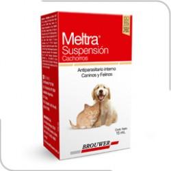MELTRA SUSPENSION X 15 ML