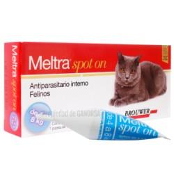 MELTRA FELINO SPOT ON  4 A 8 KGS