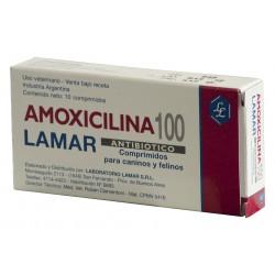 AMOXICILINA 100 MG X  10 COMP.