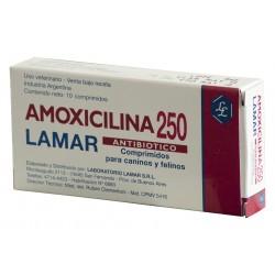 AMOXICILINA 250 MG X  10 COMP.