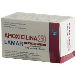 AMOXICILINA 250 MG X 100 COMP.