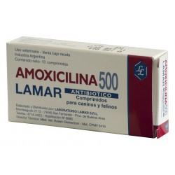 AMOXICILINA 500 MG X  10 COMP.
