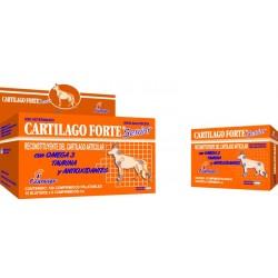 CARTILAGO FORTE SENIOR X  16 COMP.