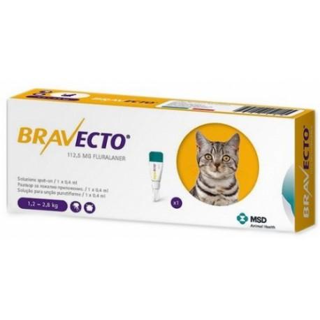 BRAVECTO GATO SPOT IN CHICO 1.2-2.8 KG