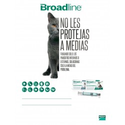 BROADLINE CATS S X 1 PIP