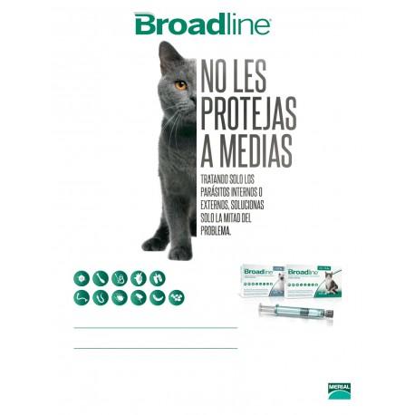 BROADLINE CATS S X 1 PIP