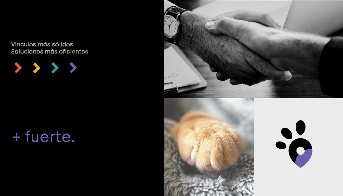 La comunidad veterinaria más fuerte