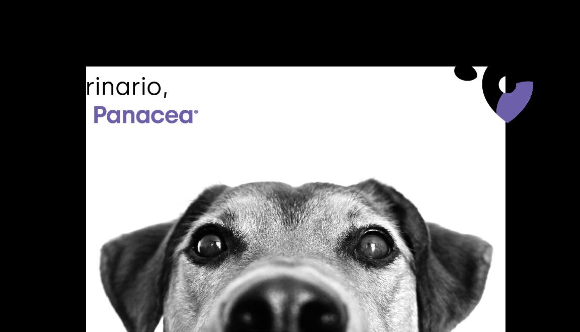 Donde hay un consultorio veterinario, está Panacea
